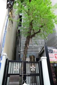 旧五條町天神社跡(現ヨドバシカメラ脇)
