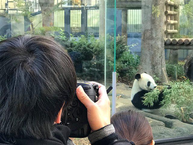 毎日パンダ2000日記念